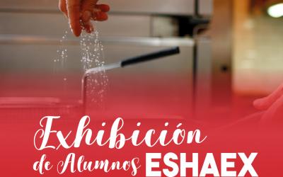 Exhibición de Alumnos de la Escuela ESHAEX 2019