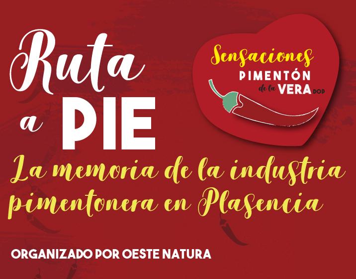 RUTA A PIE 2019