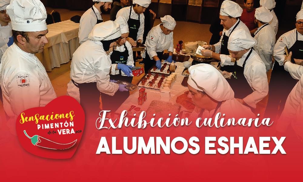Exhibición Alumnos ESHAEX 2020