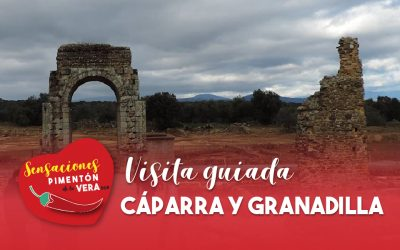 Visita guiada en Cáparra y Granadilla 2020