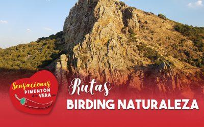Rutas Birding Naturaleza 2020
